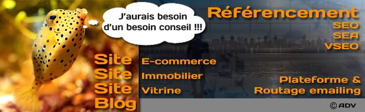 Depuis 2007 nous conseillons pour vos stratégies Web Marketing